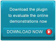 Download the plugin to test Copysafe Web protection demonstrations online